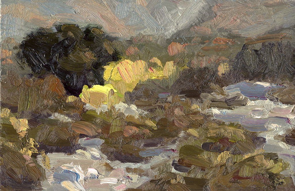 Slightly abstract oil painting of the vegetation and rocks in a wash