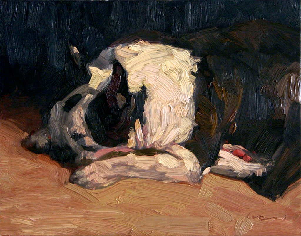 Oil portrait of a Boston Terrier dog sleeping on the floor